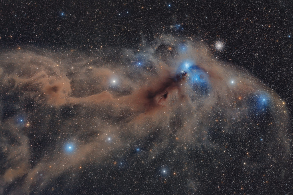 STJERNER og TÅKER: Corona Australis Dust Complex © Mario Cogo